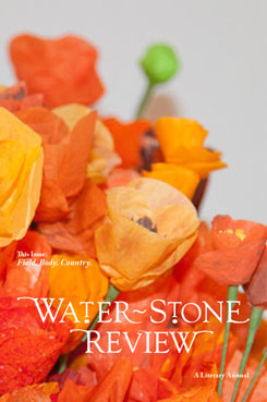 waterstone review, issue 19