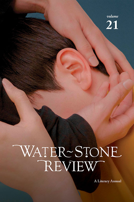 Water~Stone Review, v.20